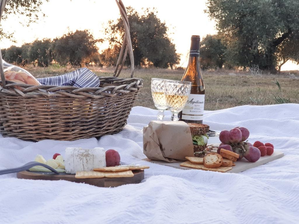 Cesta - manta - vino - sanwich - todo lo necesario para un día de picnic