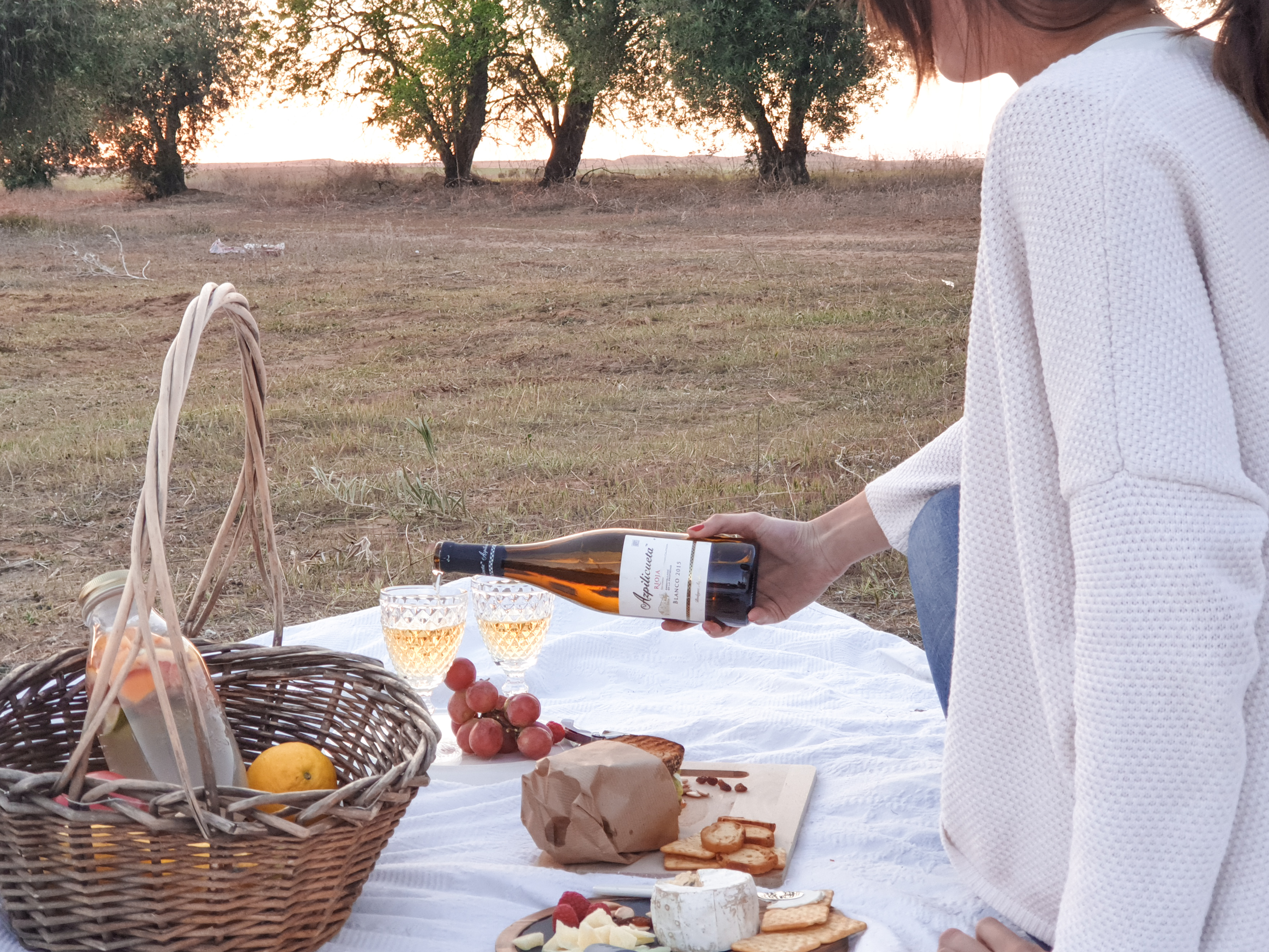 Ingredients for a picnic day